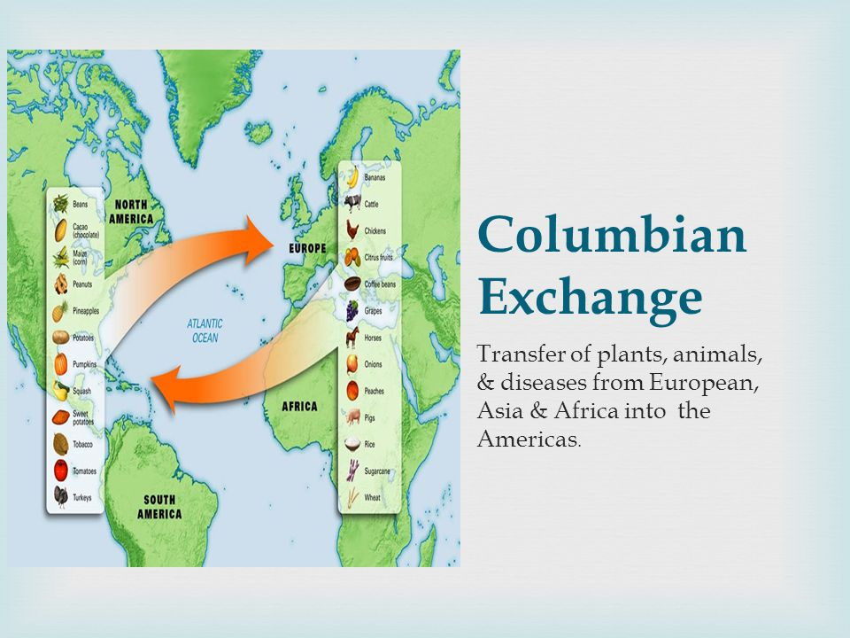 Columbian Exchange Transfer of plants, animals, & diseases from European, Asia & Africa into the Americas.