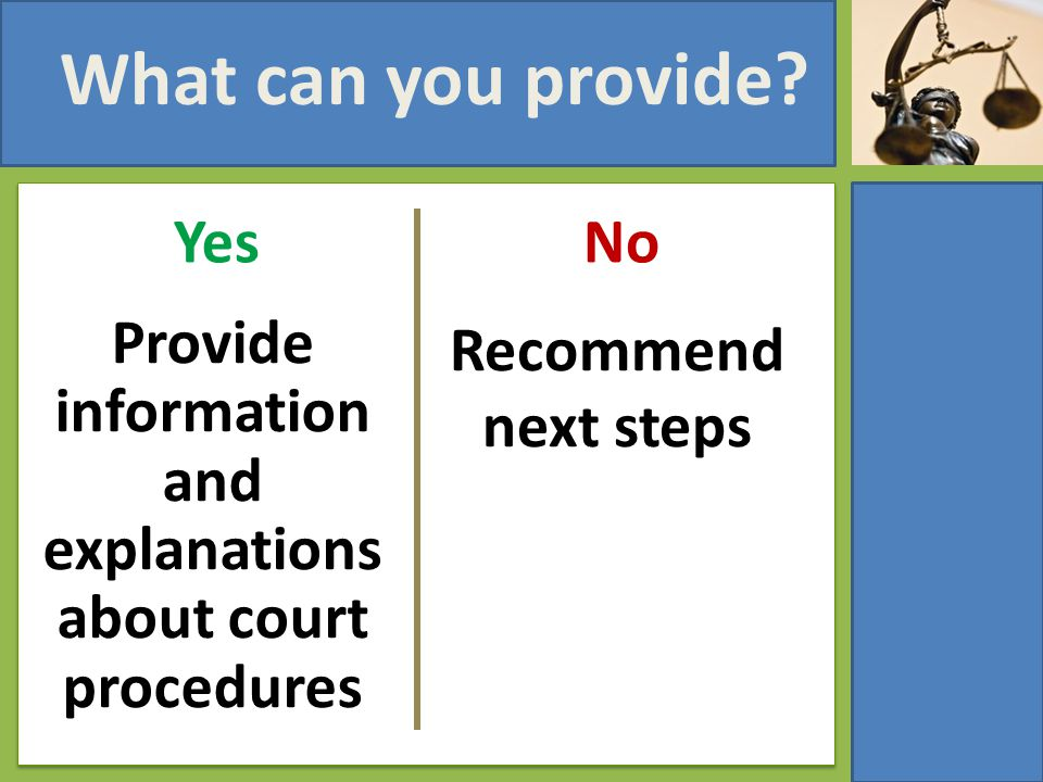 What can you provide? Yes Provide information and explanations about court procedures No Recommend next steps