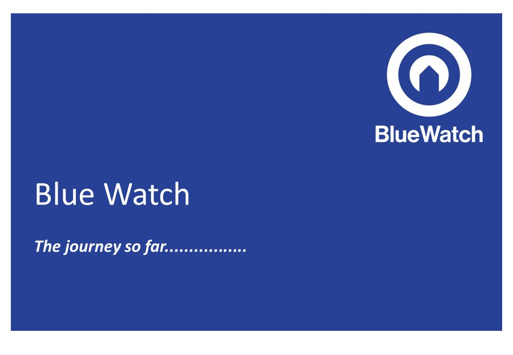 What is Blue Watch.