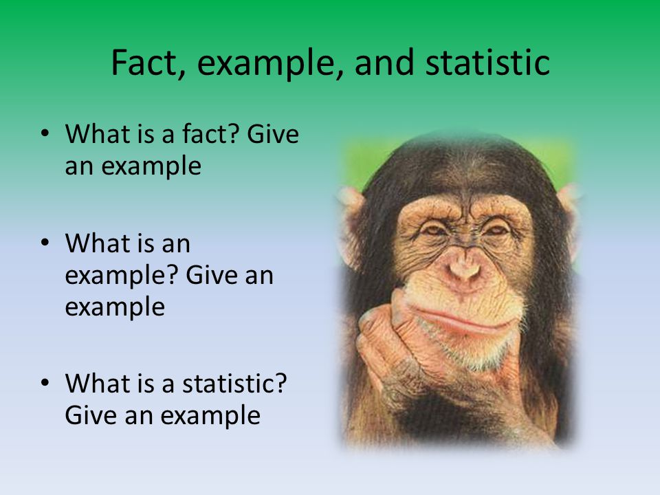 Fact, example, and statistic What is a fact? Give an example What is an example? Give an example What is a statistic? Give an example