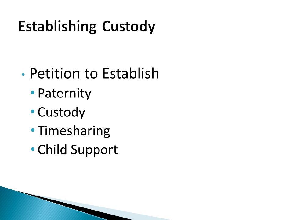 Petition to Establish Paternity Custody Timesharing Child Support