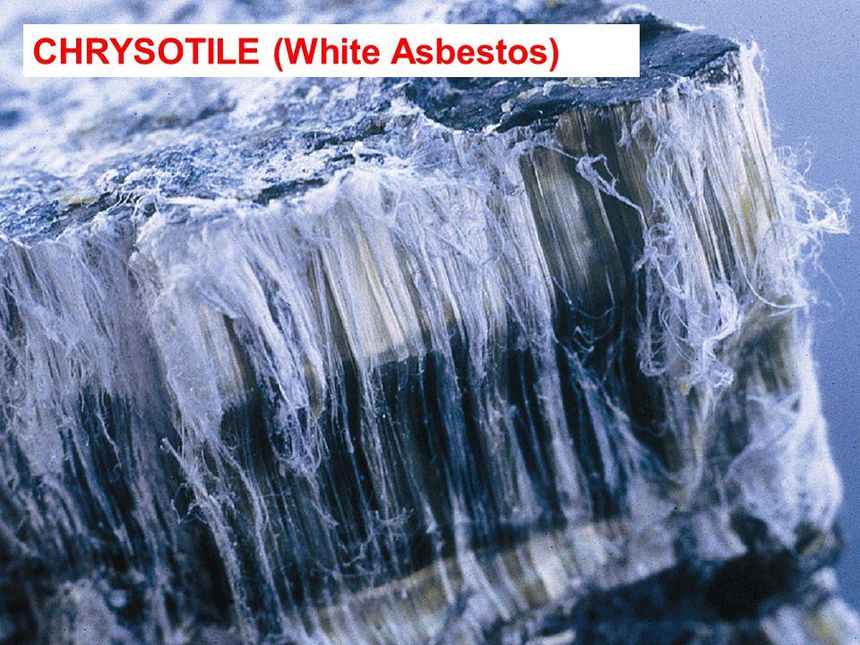 CHRYSOTILE (White Asbestos)