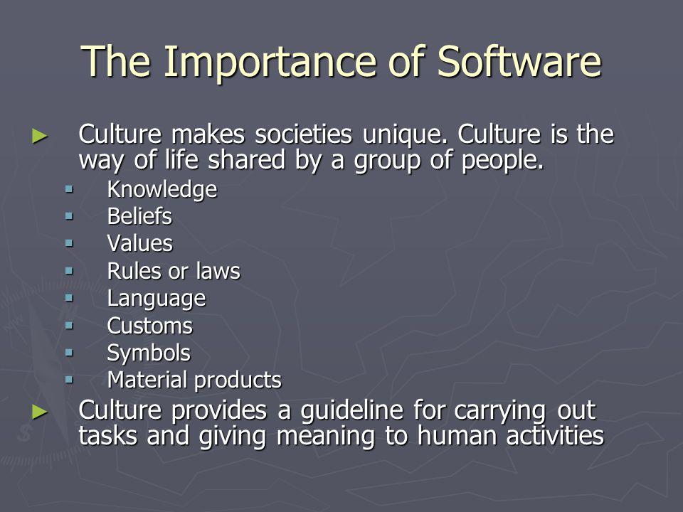 The Importance of Software ► Culture makes societies unique.