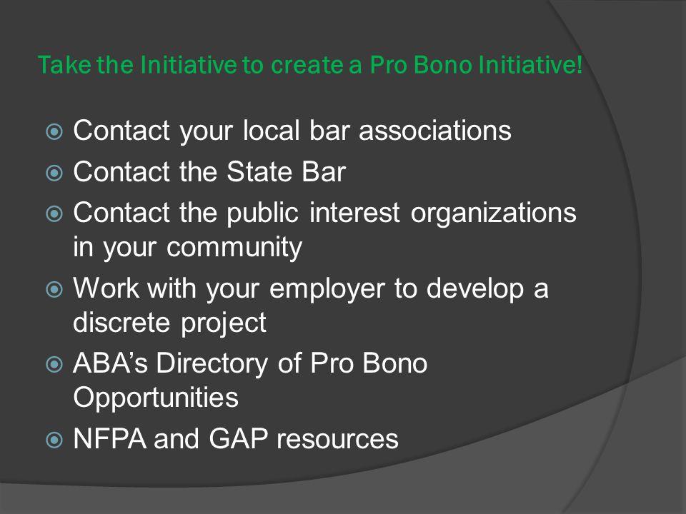 Take the Initiative to create a Pro Bono Initiative.