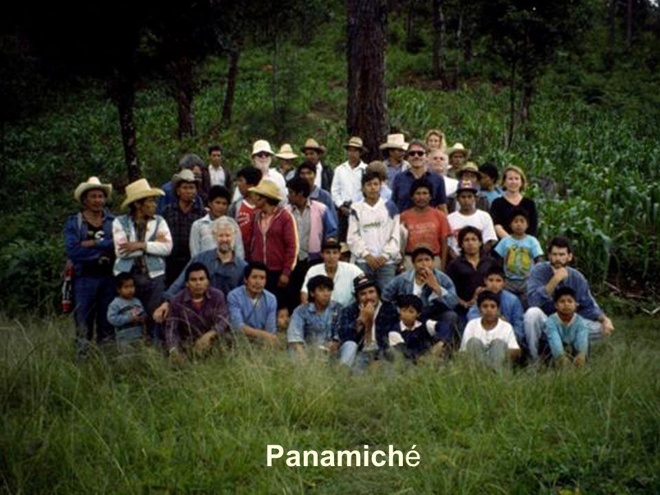Panamiché
