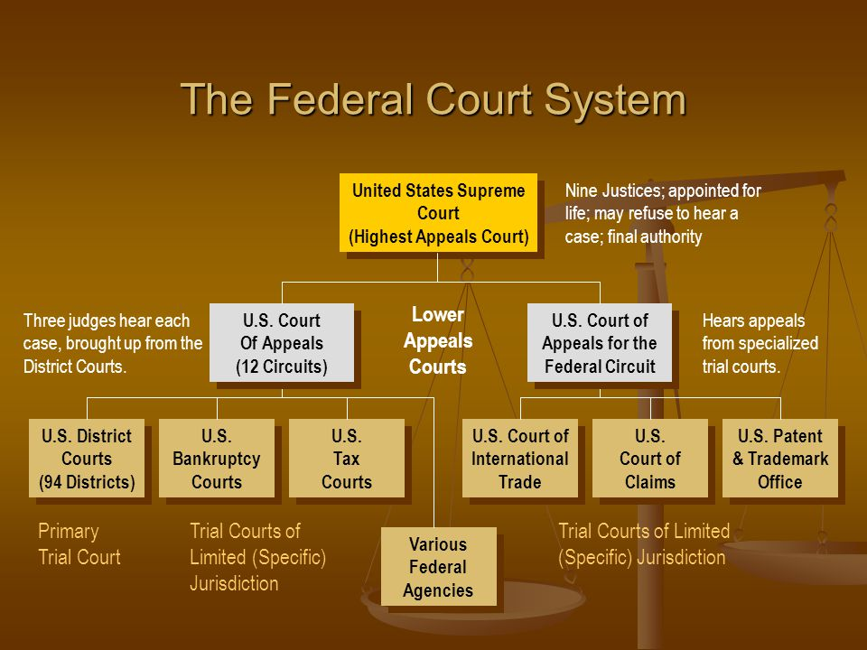 The Federal Court System United States Supreme Court (Highest Appeals Court) United States Supreme Court (Highest Appeals Court) Nine Justices; appointed for life; may refuse to hear a case; final authority Three judges hear each case, brought up from the District Courts.