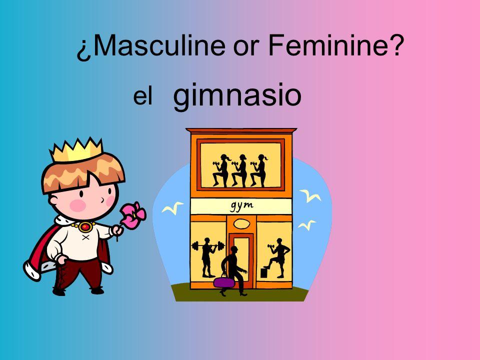 ¿Masculine or Feminine? gimnasio el