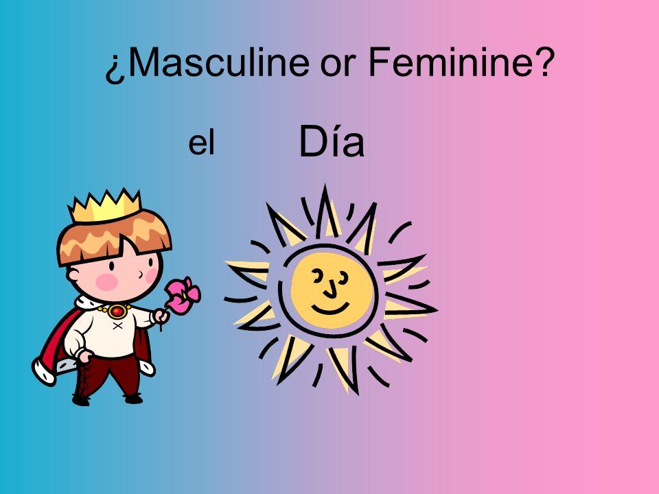 Día el ¿Masculine or Feminine?