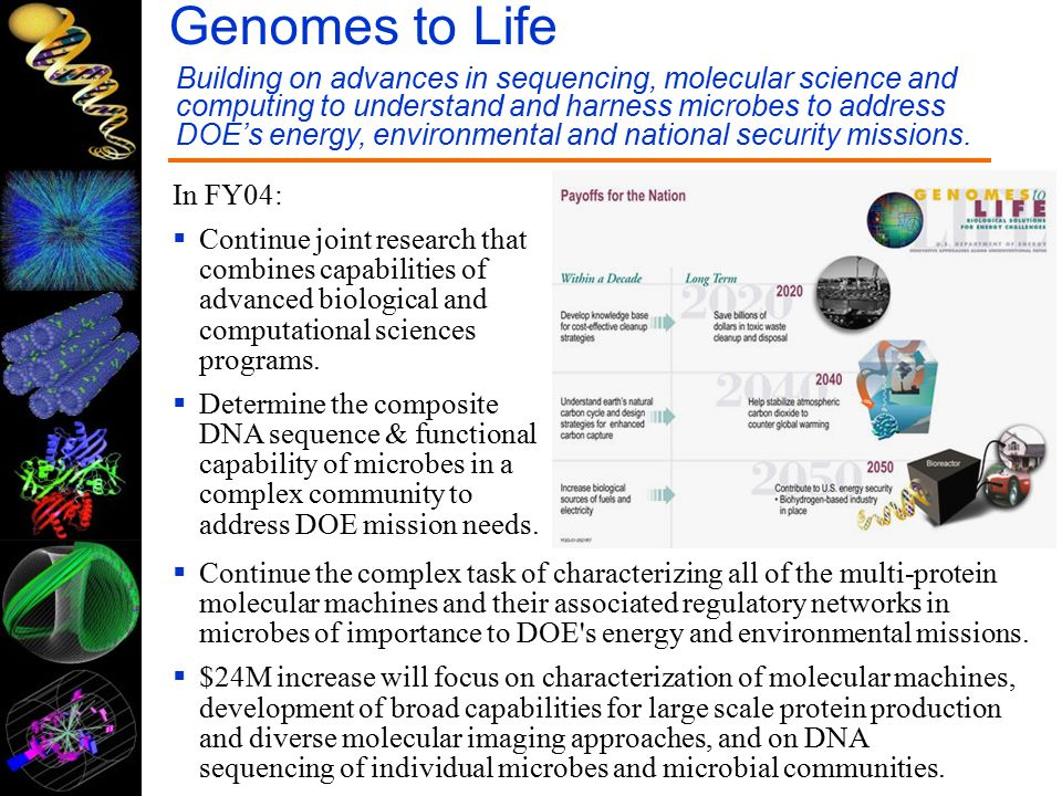 In FY04:  Continue joint research that combines capabilities of advanced biological and computational sciences programs.