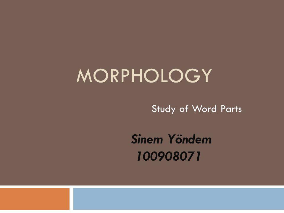 MORPHOLOGY Study of Word Parts Sinem Yöndem 100908071