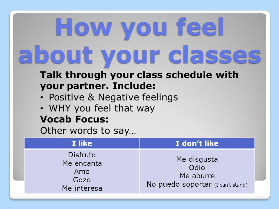 Your Class Schedule: Talk through your class schedule with your partner.