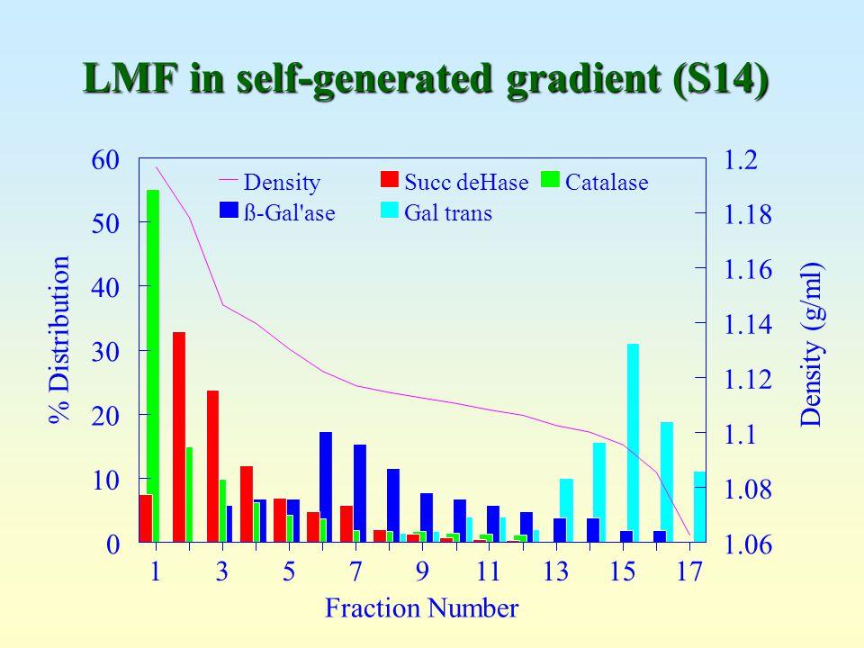 LMF in self-generated gradient (S14)