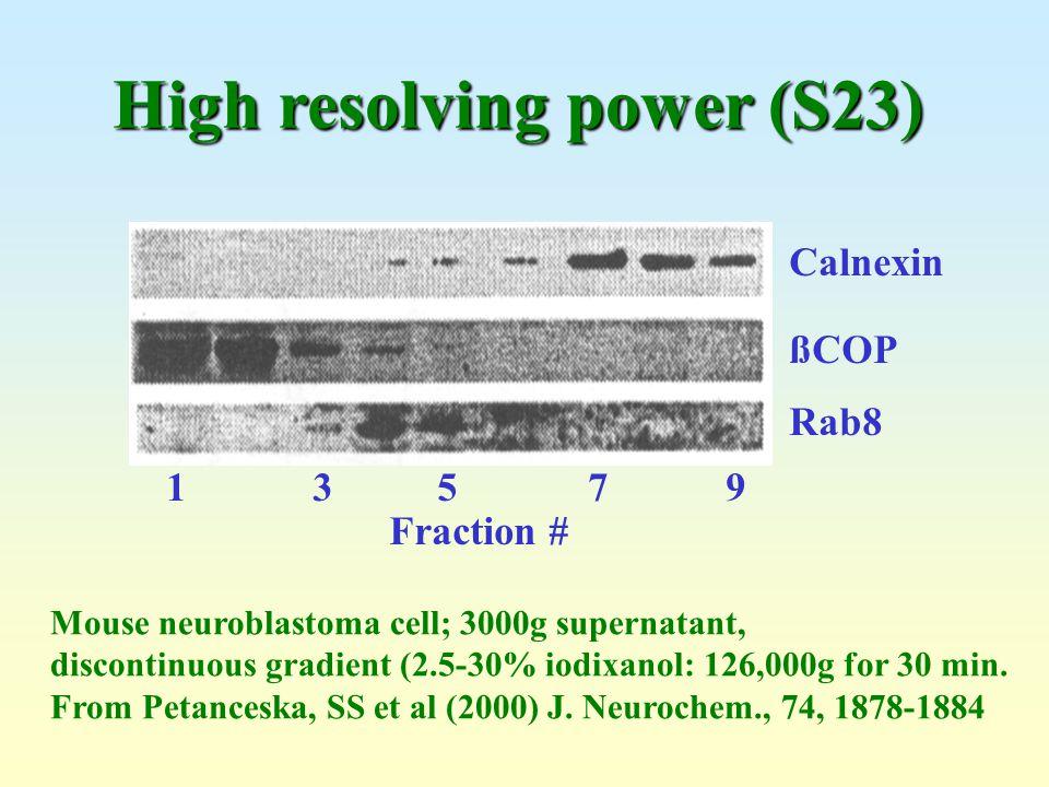 Mouse neuroblastoma cell; 3000g supernatant, discontinuous gradient (2.5-30% iodixanol: 126,000g for 30 min. From Petanceska, SS et al (2000) J. Neuro