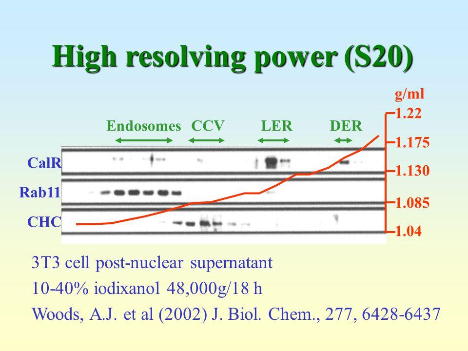 CalR Rab11 CHC 1.22 1.175 1.130 1.085 1.04 g/ml EndosomesCCVLERDER 3T3 cell post-nuclear supernatant 10-40% iodixanol 48,000g/18 h Woods, A.J. et al (
