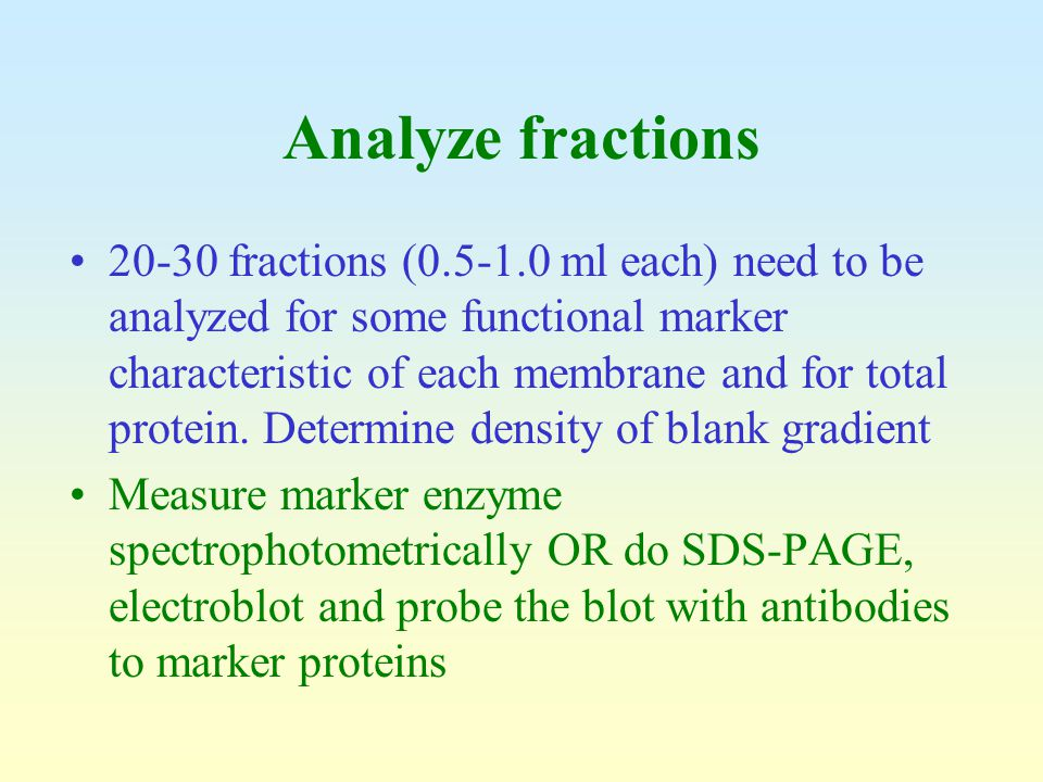Analyze fractions 20-30 fractions (0.5-1.0 ml each) need to be analyzed for some functional marker characteristic of each membrane and for total prote