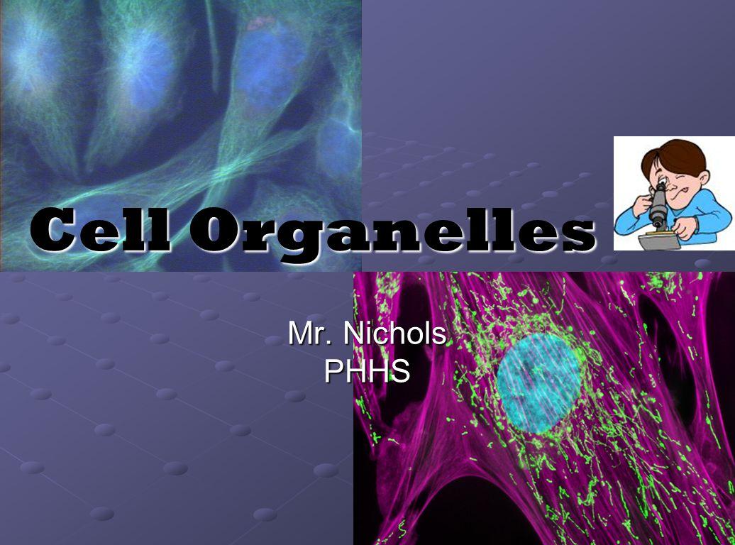 Cell Organelles Mr. Nichols PHHS
