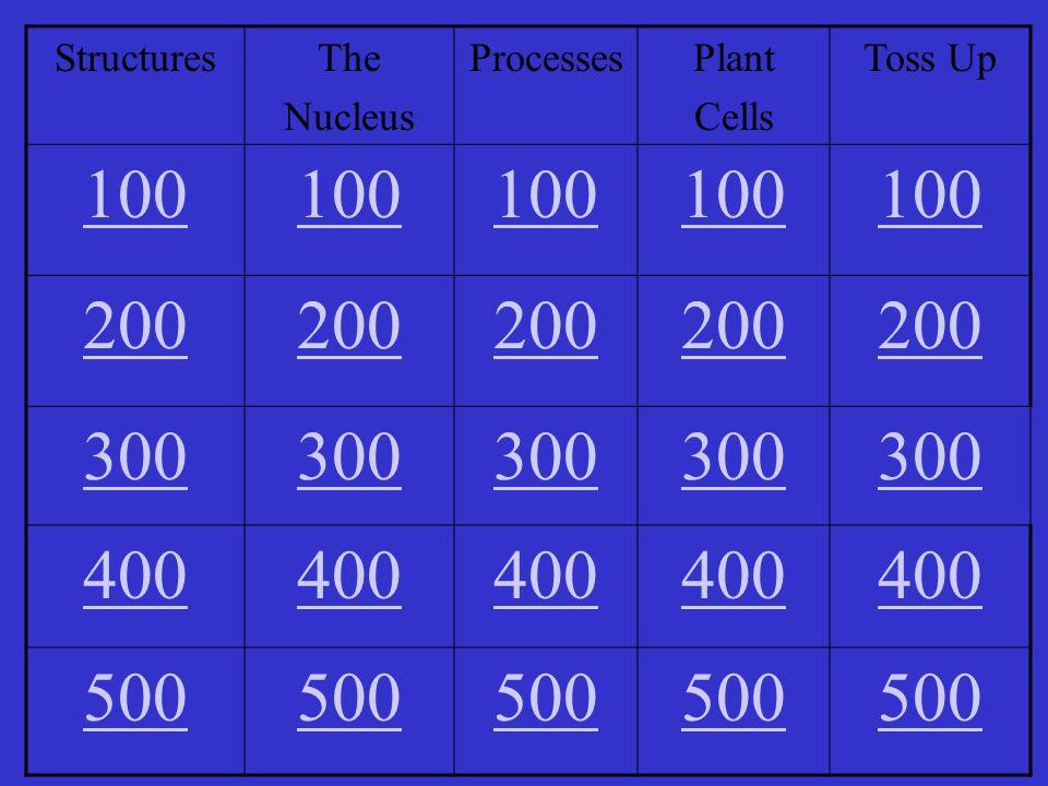 StructuresThe Nucleus ProcessesPlant Cells Toss Up 100 200 300 400 500