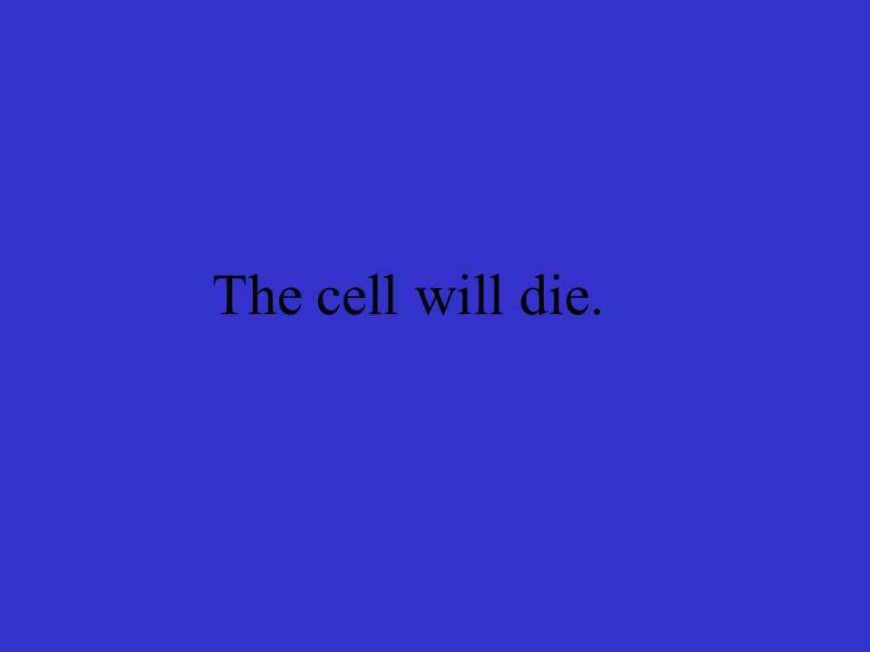 The cell will die.
