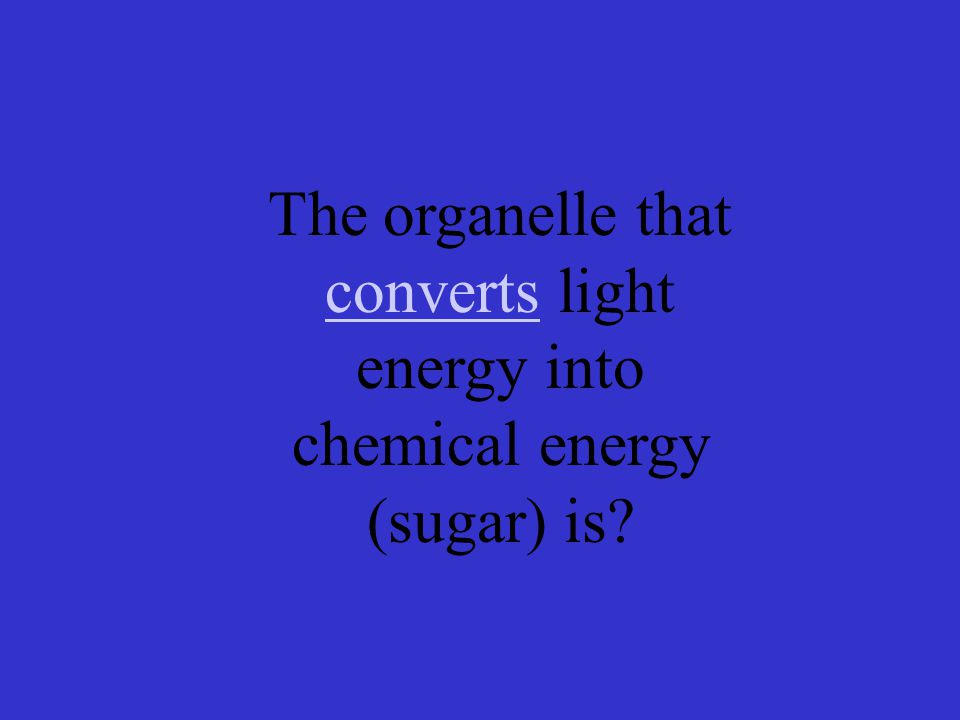 The organelle that converts light energy into chemical energy (sugar) is converts