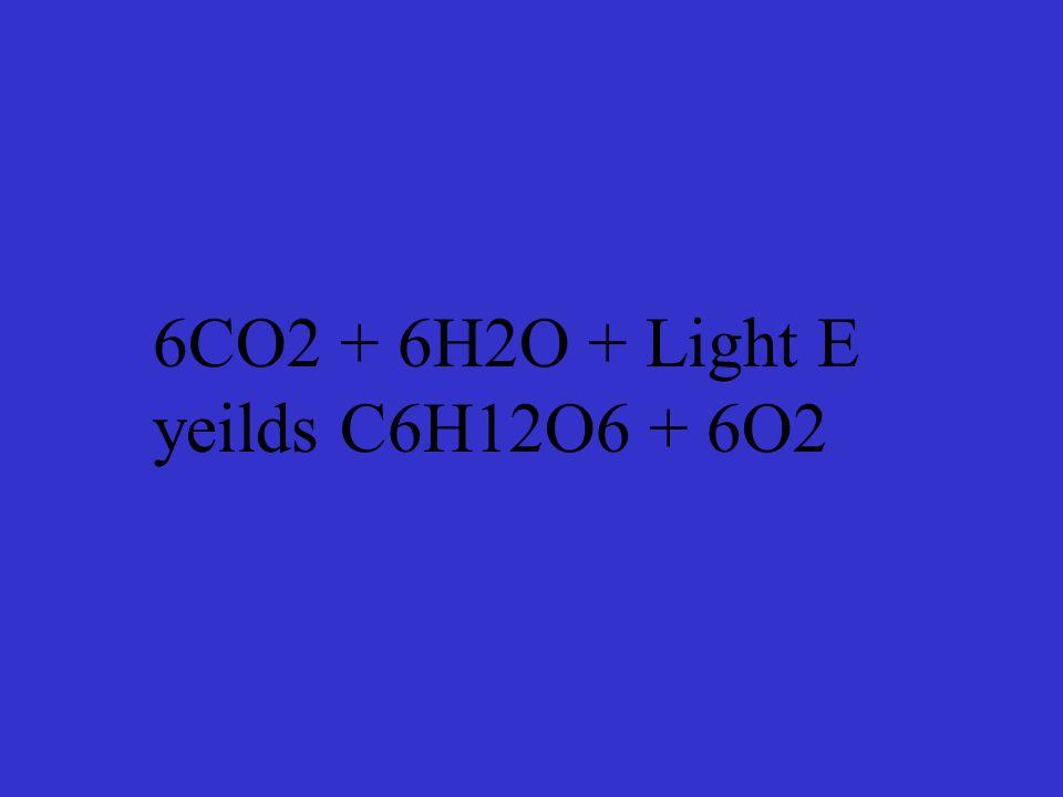 6CO2 + 6H2O + Light E yeilds C6H12O6 + 6O2