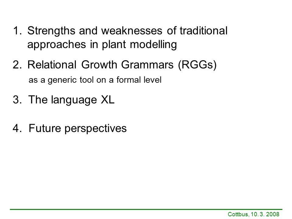 1.Strengths and weaknesses of traditional approaches in plant modelling 2.Relational Growth Grammars (RGGs) as a generic tool on a formal level 3. The