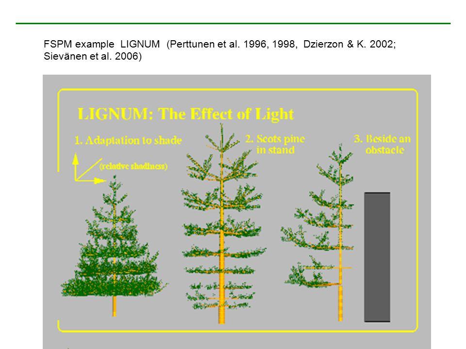FSPM example LIGNUM (Perttunen et al. 1996, 1998, Dzierzon & K. 2002; Sievänen et al. 2006)