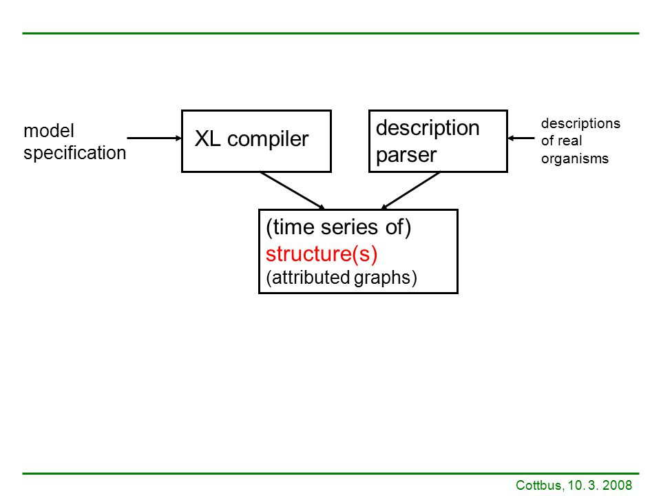 XL compiler description parser (time series of) structure(s) (attributed graphs) model specification descriptions of real organisms Cottbus, 10. 3. 20