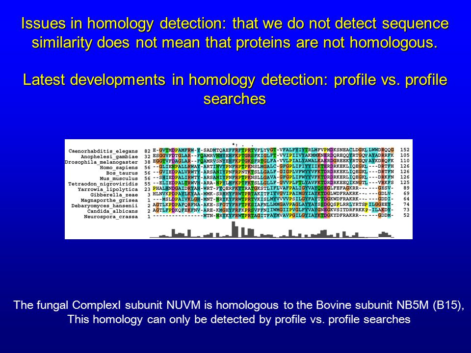 Issues in homology detection: that we do not detect sequence similarity does not mean that proteins are not homologous.