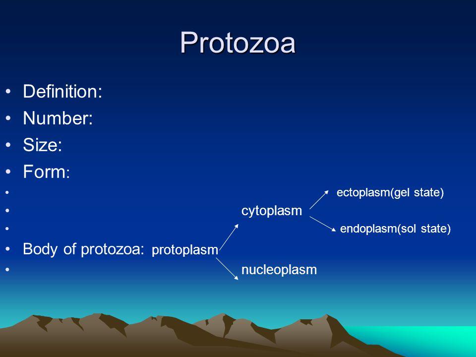 Protozoa Definition: Number: Size: Form : ectoplasm(gel state) cytoplasm endoplasm(sol state) Body of protozoa: protoplasm nucleoplasm