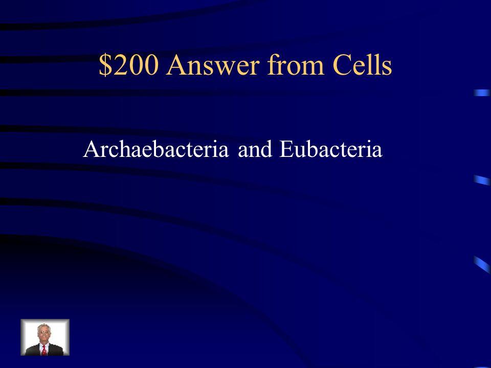 $200 Answer from Genetics Transcription