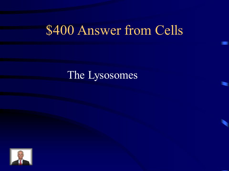 $400 Answer from Cells The Lysosomes