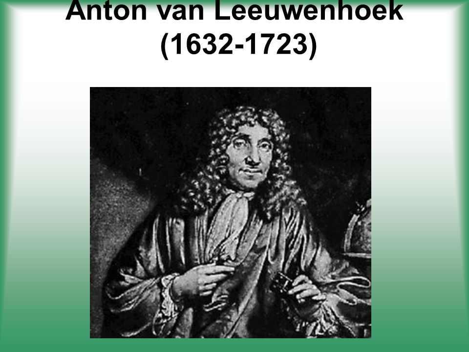Anton Van Leewenhoek 1674 One of the first scientist to observe living things in pond water with a single lens microscope