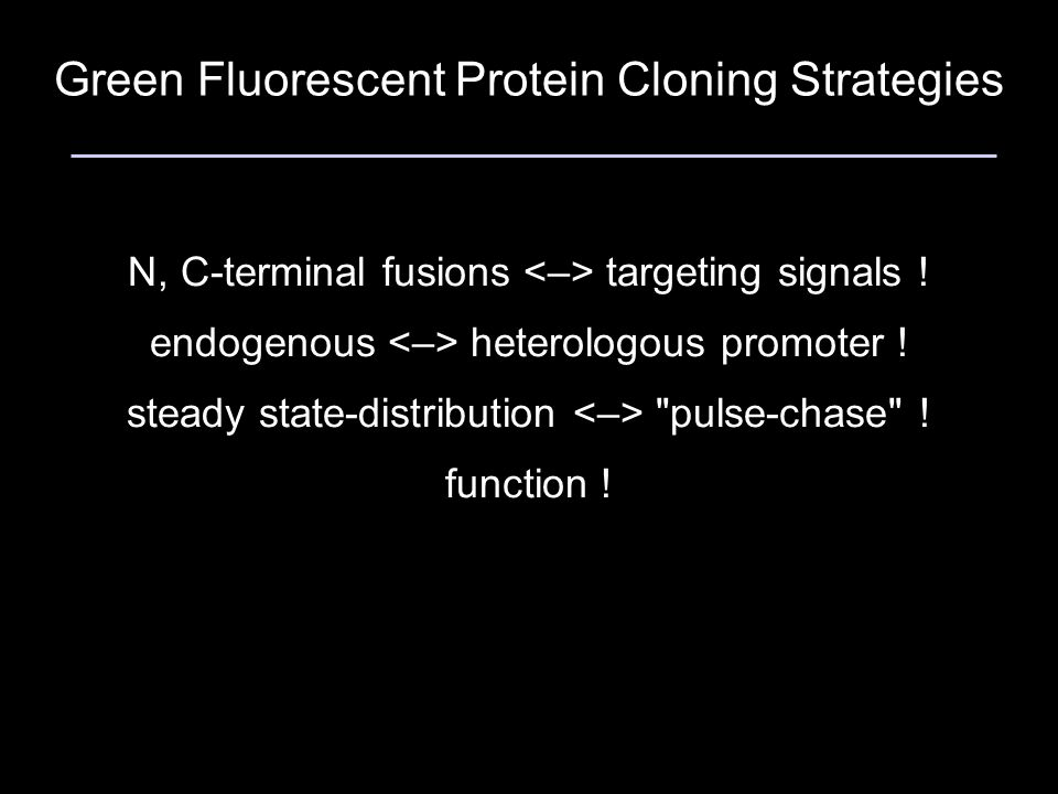 Green Fluorescent Protein Cloning Strategies N, C-terminal fusions targeting signals .