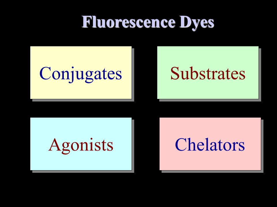 Fluorescence Dyes Conjugates Substrates Agonists Chelators