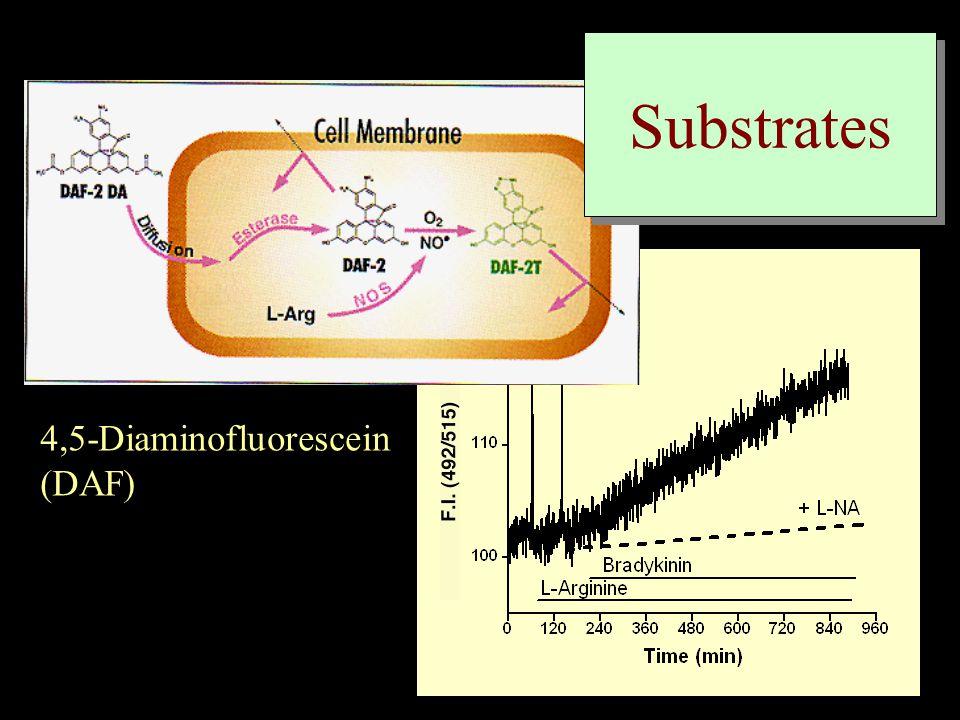 4,5-Diaminofluorescein (DAF) Substrates