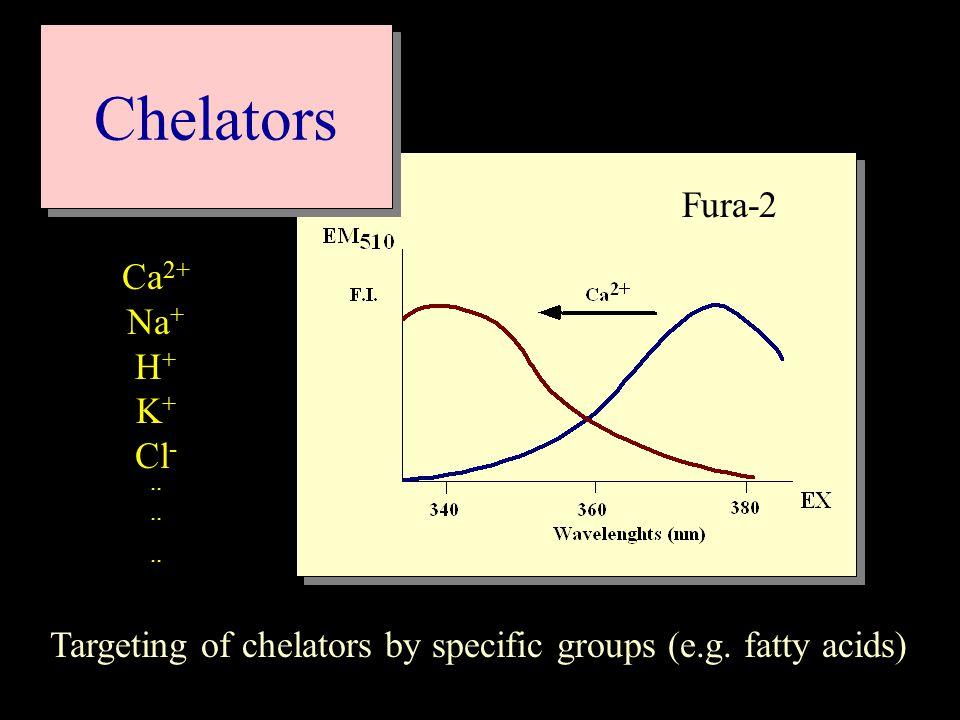 Chelators Targeting of chelators by specific groups (e.g.