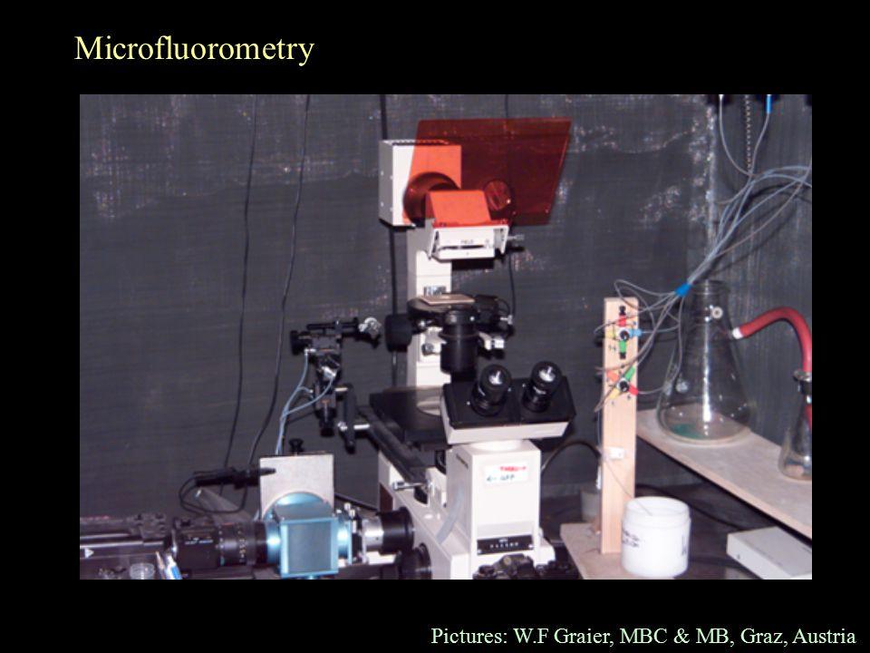 Microfluorometry Pictures: W.F Graier, MBC & MB, Graz, Austria