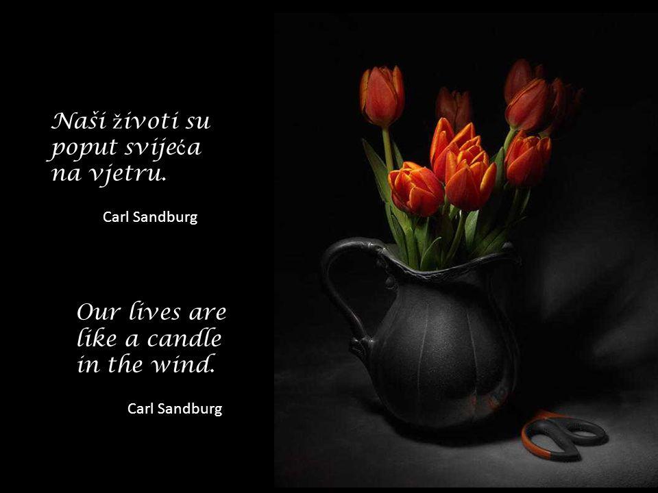 Svrha ž ivota je ž ivjeti u skladu s prirodom. Zeno The goal of life is living in agreement with nature. Zeno