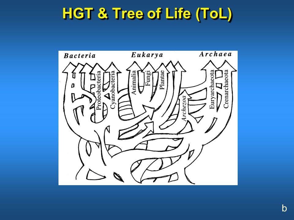 HGT & Tree of Life (ToL) b