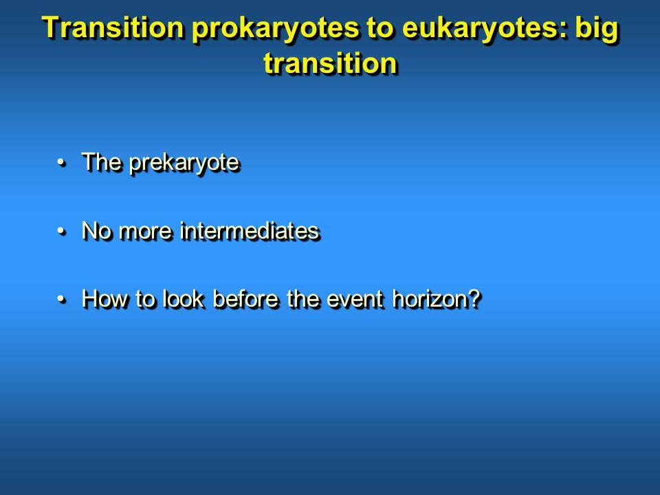 Transition prokaryotes to eukaryotes: big transition The prekaryoteThe prekaryote No more intermediatesNo more intermediates How to look before the event horizon How to look before the event horizon.