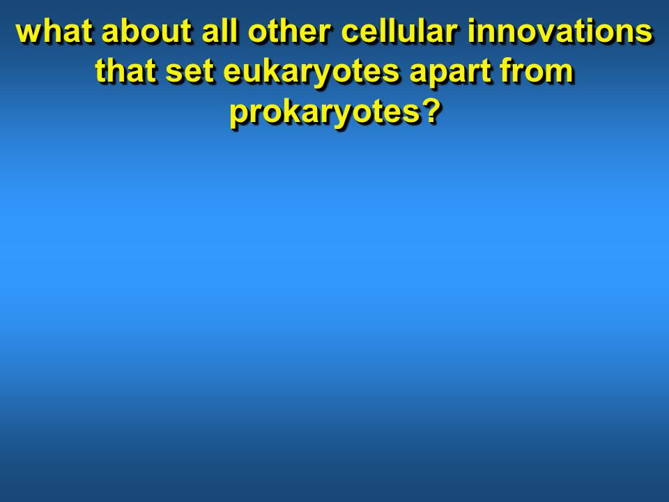 what about all other cellular innovations that set eukaryotes apart from prokaryotes?