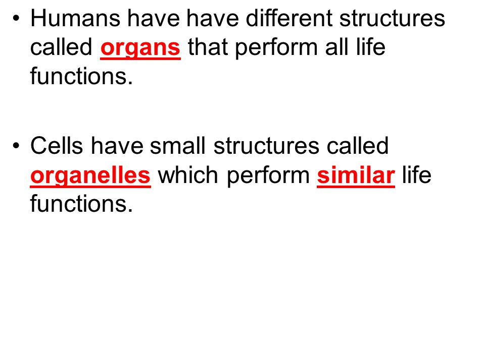 Humans have have different structures called organs that perform all life functions. Cells have small structures called organelles which perform simil