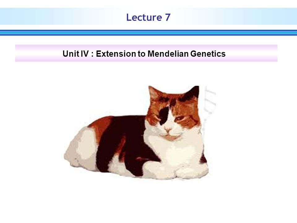 Alleles implicate with survival of individuals carrying this genes  those carrying homozygous allele die.