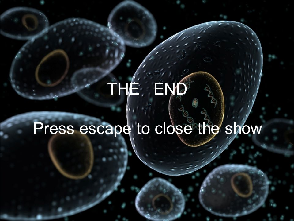 THE END Press escape to close the show