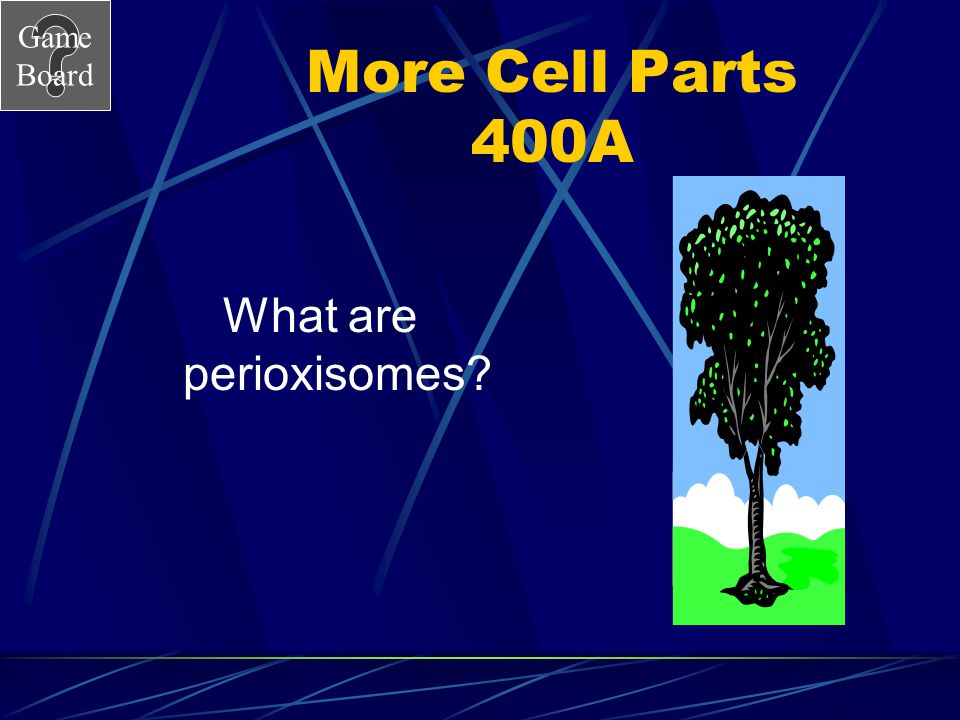 Game Board More Cell Parts 400 Vesicle filled with detoxifying enzymes. Answer