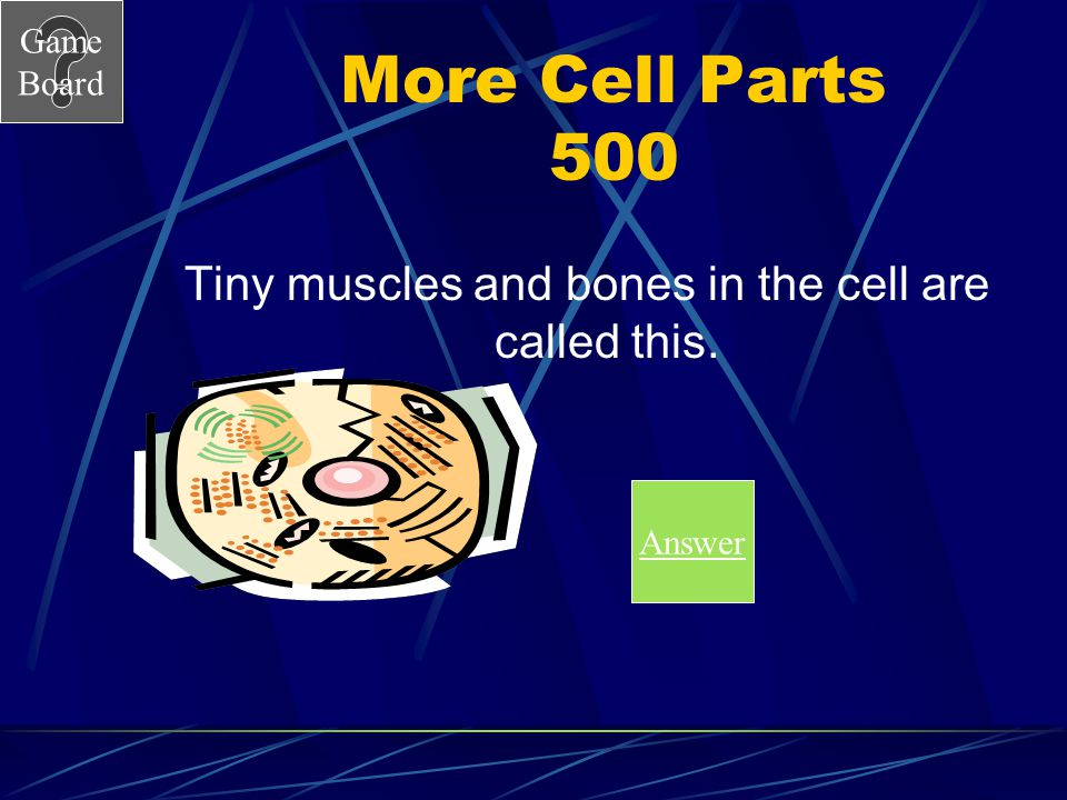 Game Board More Cell Parts 400A What are perioxisomes?