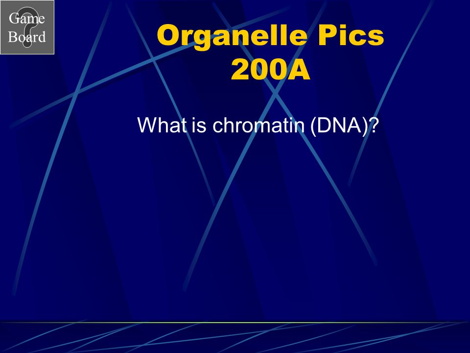 Game Board Organelle pics 200 Answer