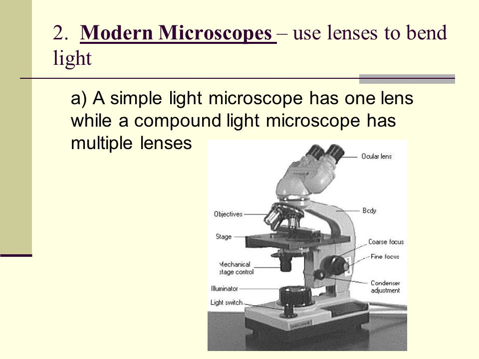 2. Modern Microscopes – use lenses to bend light a) A simple light microscope has one lens while a compound light microscope has multiple lenses