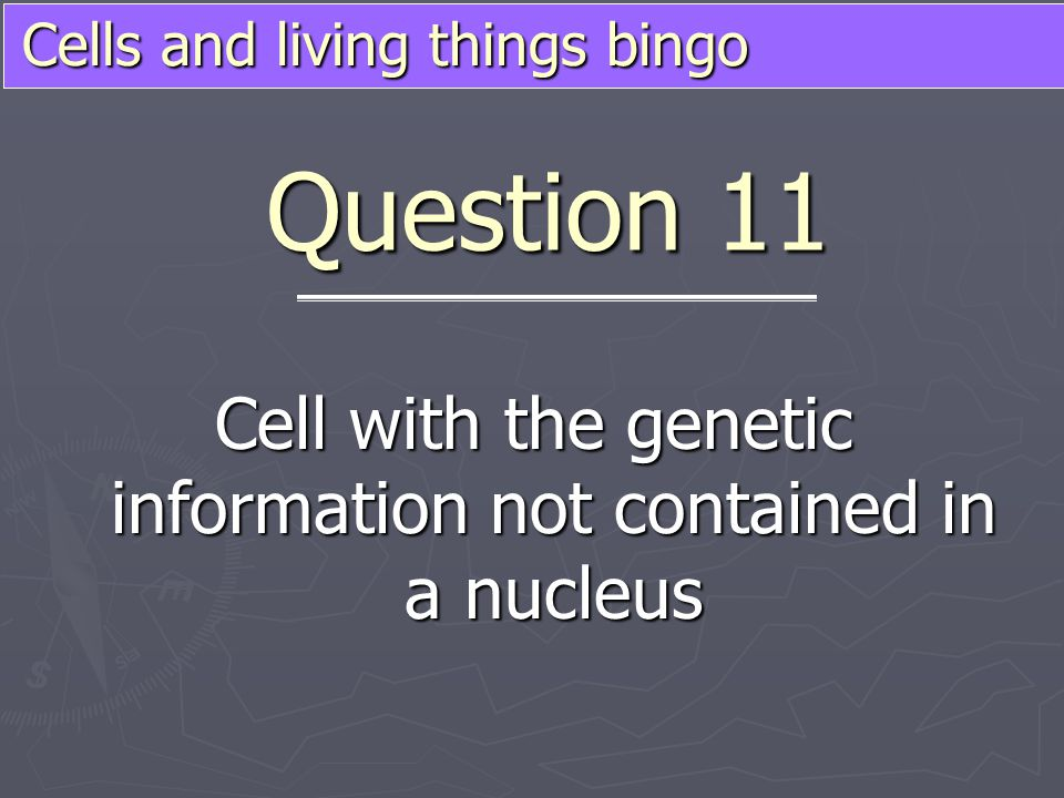 Cells and living things bingo Cell with the genetic information not contained in a nucleus Question 11