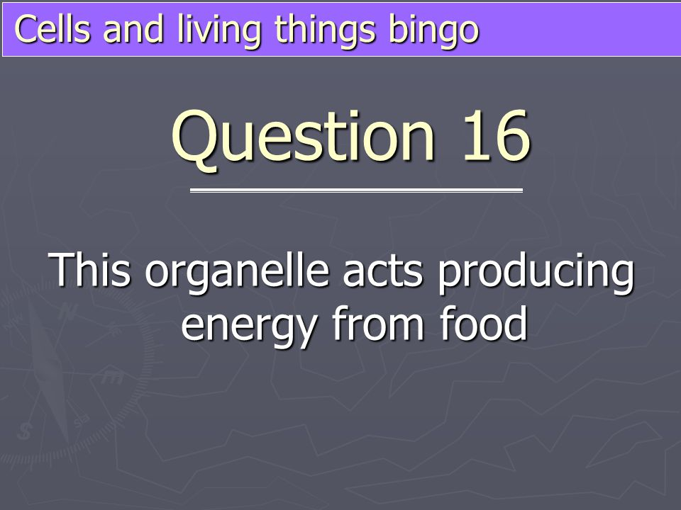 Cells and living things bingo This organelle acts producing energy from food Question 16